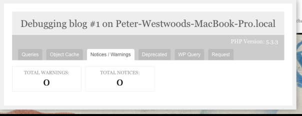 This shows any php notices or warnings in the current page